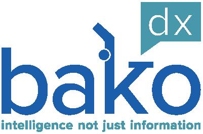 Bako Final2 Logo 2x